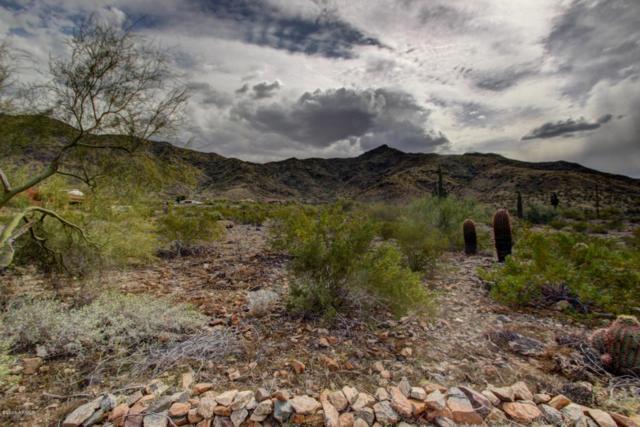 2700 W Cheyenne Drive, Laveen, AZ 85339 (MLS #5782154) :: Arizona Best Real Estate