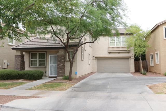 5639 S 23RD Place, Phoenix, AZ 85040 (MLS #5782181) :: My Home Group