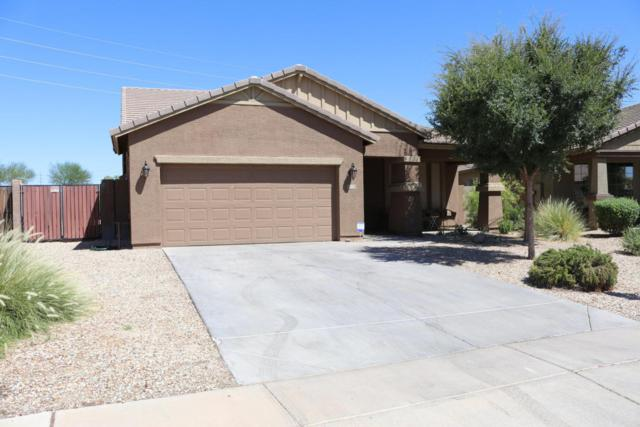 171 S 107TH Drive, Avondale, AZ 85323 (MLS #5782247) :: The Bill and Cindy Flowers Team