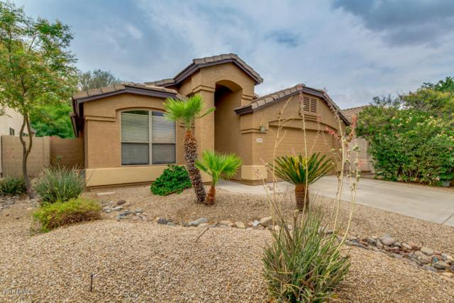 3939 E Potter Drive, Phoenix, AZ 85050 (MLS #5782302) :: The Jesse Herfel Real Estate Group
