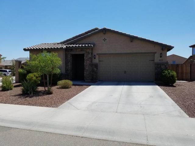 4023 S 183RD Lane, Goodyear, AZ 85338 (MLS #5782306) :: Kortright Group - West USA Realty