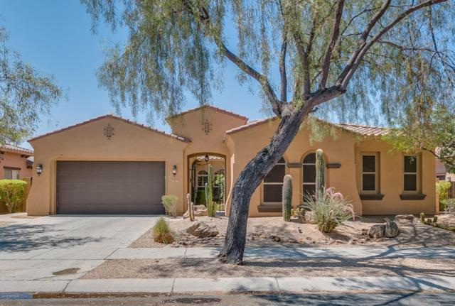 1813 W Dusty Wren Drive, Phoenix, AZ 85085 (MLS #5782315) :: Yost Realty Group at RE/MAX Casa Grande