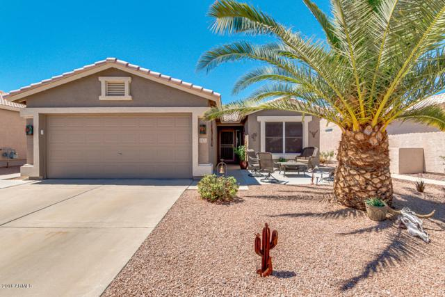 1471 E Bellerive Drive, Chandler, AZ 85249 (MLS #5782318) :: The Kenny Klaus Team