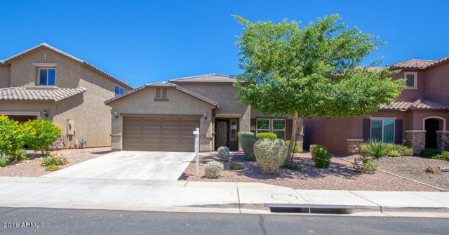 10742 W Yearling Road, Peoria, AZ 85383 (MLS #5782321) :: The Worth Group