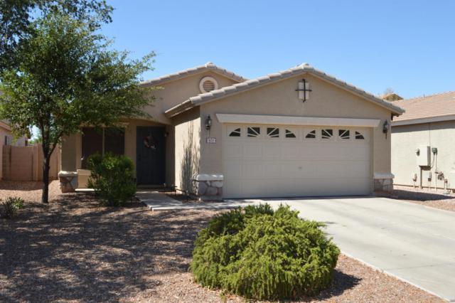 825 E Monteleone Street, San Tan Valley, AZ 85140 (MLS #5782324) :: Realty Executives