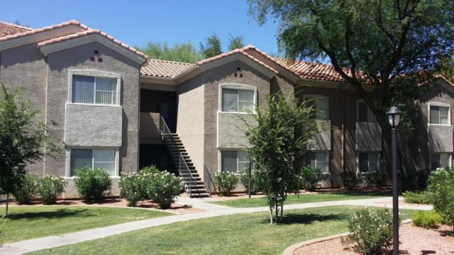 3830 E Lakewood Parkway E #2018, Phoenix, AZ 85048 (MLS #5782331) :: The Daniel Montez Real Estate Group