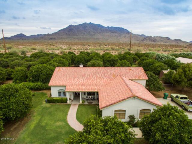 17211 E Starflower Court, Queen Creek, AZ 85142 (MLS #5782333) :: The Kenny Klaus Team