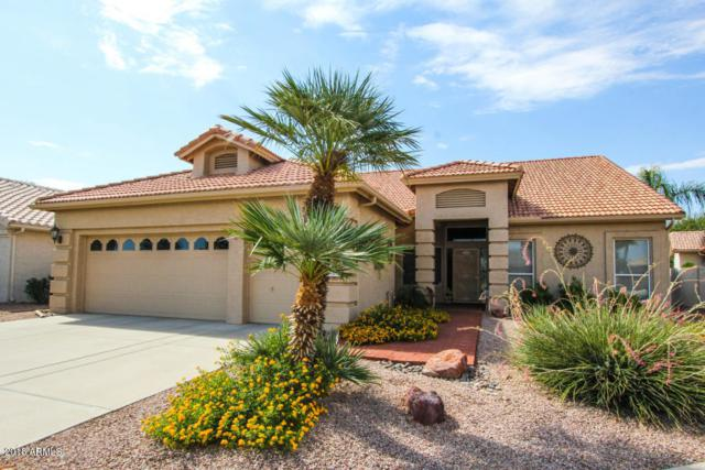 441 W Beechnut Place, Chandler, AZ 85248 (MLS #5782352) :: The Kenny Klaus Team