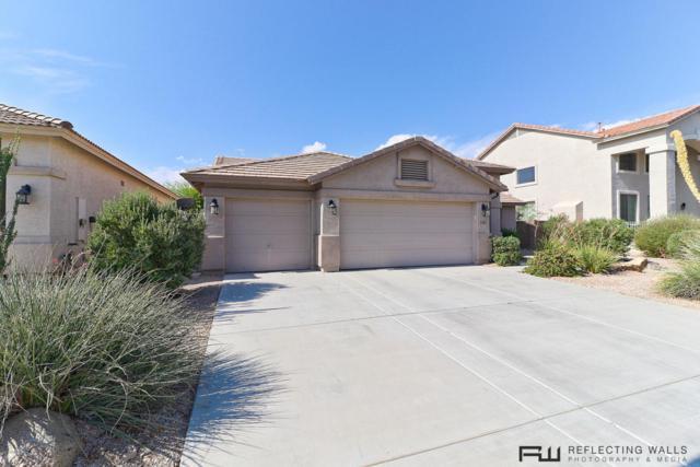 29661 W Amelia Avenue, Buckeye, AZ 85396 (MLS #5782358) :: Yost Realty Group at RE/MAX Casa Grande