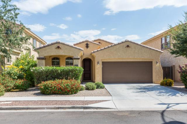 3547 E Liberty Lane, Gilbert, AZ 85296 (MLS #5782368) :: The Everest Team at My Home Group