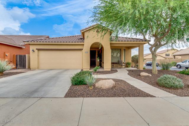11755 W Patrick Lane, Sun City, AZ 85373 (MLS #5782380) :: The Worth Group