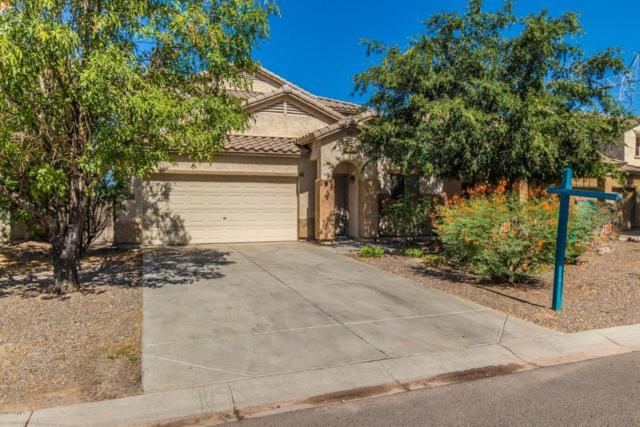 41580 N Salix Drive, San Tan Valley, AZ 85140 (MLS #5782388) :: Essential Properties, Inc.
