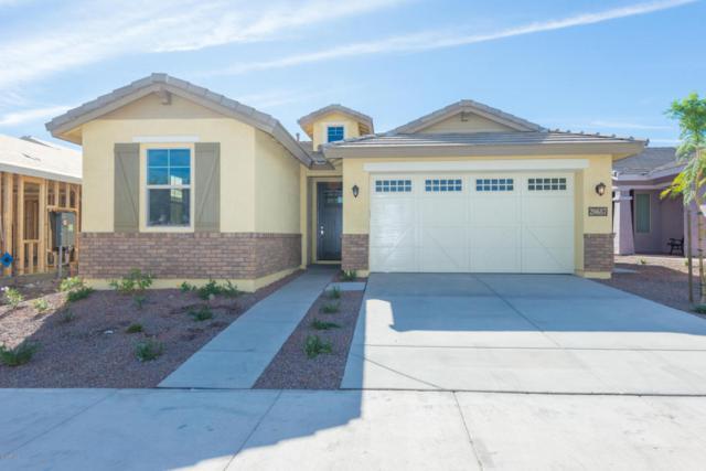 20687 W Colina Court, Buckeye, AZ 85396 (MLS #5782424) :: My Home Group