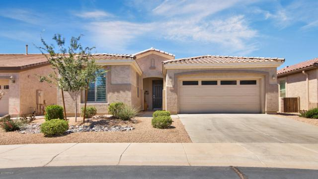 4038 E Lodgepole Drive, Gilbert, AZ 85298 (MLS #5782435) :: Realty Executives