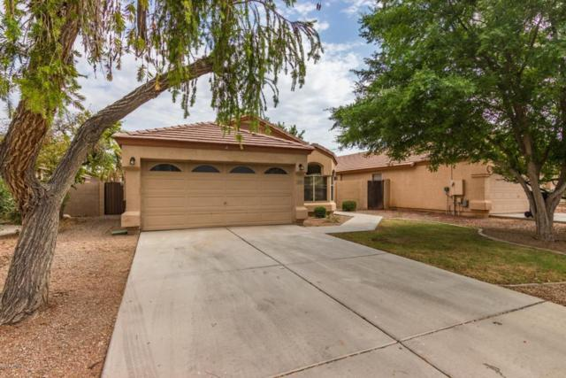 2336 E Pinto Drive, Gilbert, AZ 85296 (MLS #5782443) :: Realty Executives