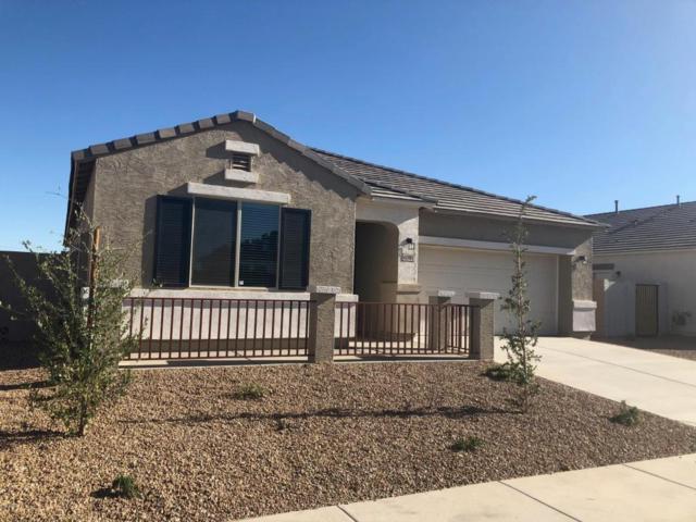 40985 W Williams Way, Maricopa, AZ 85138 (MLS #5782467) :: Revelation Real Estate