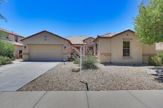 4520 N 151st Drive, Goodyear, AZ 85395 (MLS #5782477) :: Kortright Group - West USA Realty