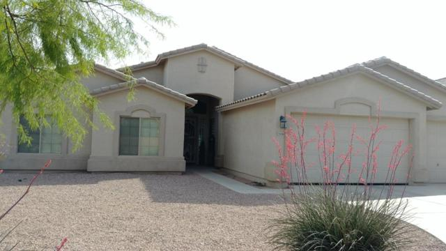 21826 N Ingram Court, Maricopa, AZ 85138 (MLS #5782535) :: The Pete Dijkstra Team