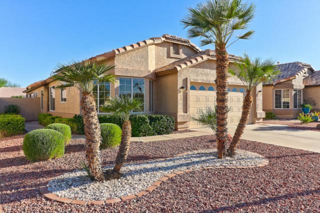 10383 W Potter Drive, Peoria, AZ 85382 (MLS #5782544) :: The Worth Group