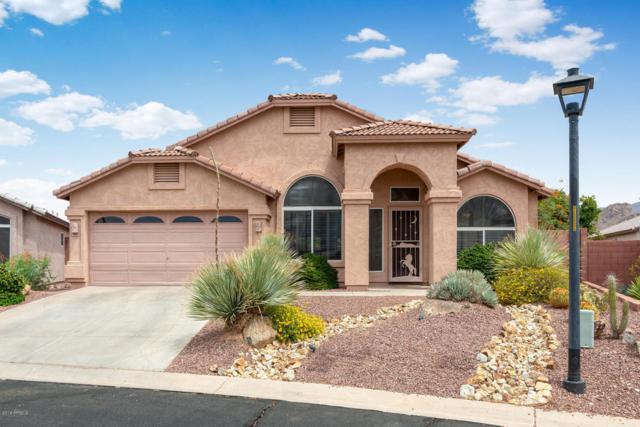 9050 E Cedar Basin Lane, Gold Canyon, AZ 85118 (MLS #5782552) :: Yost Realty Group at RE/MAX Casa Grande