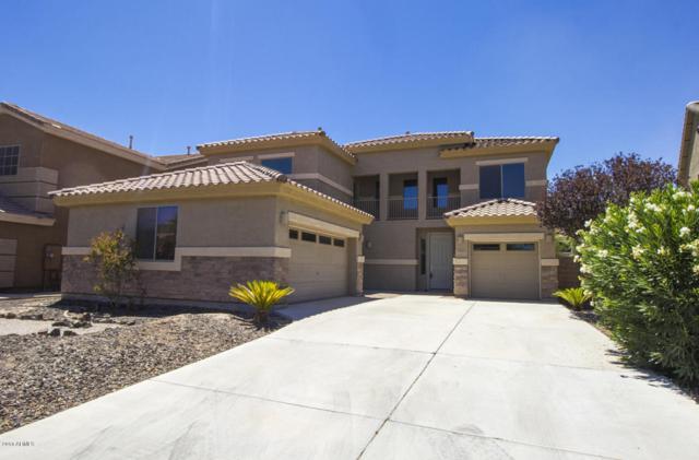 44289 W Windrose Drive, Maricopa, AZ 85138 (MLS #5782571) :: Yost Realty Group at RE/MAX Casa Grande