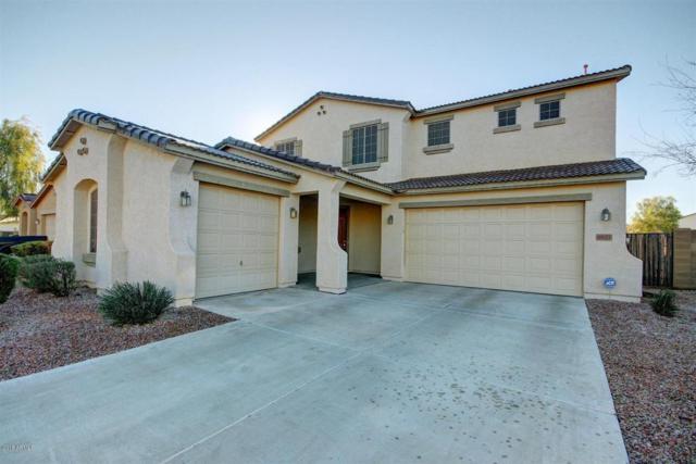 6827 W St Catherine Avenue, Laveen, AZ 85339 (MLS #5782575) :: Group 46:10