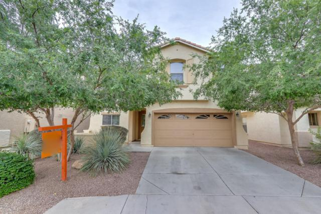 1248 E Clifton Avenue, Gilbert, AZ 85295 (MLS #5782577) :: Realty Executives
