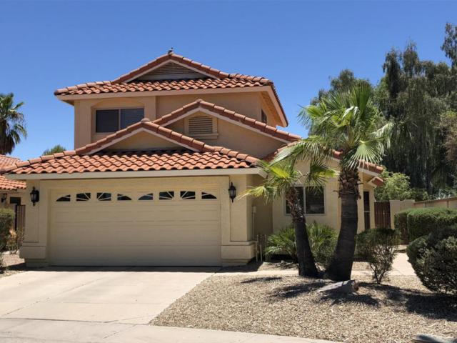 8807 E Dahlia Drive, Scottsdale, AZ 85260 (MLS #5782580) :: Realty Executives