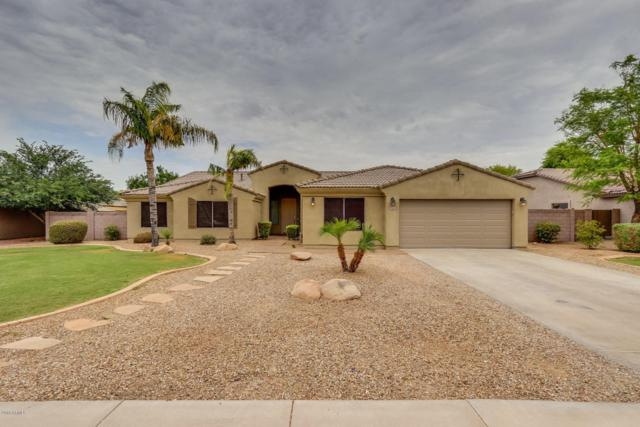 2686 E Carla Vista Drive, Gilbert, AZ 85295 (MLS #5782587) :: Realty Executives