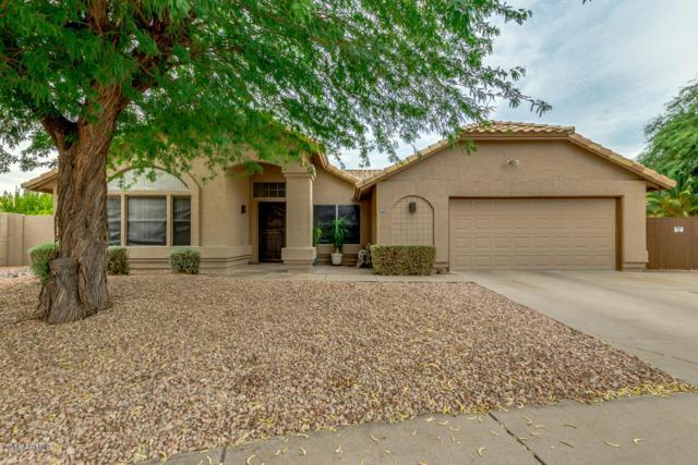 680 W Morelos Court, Chandler, AZ 85225 (MLS #5782596) :: Revelation Real Estate