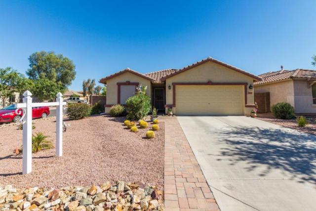 544 W Gascon Road, San Tan Valley, AZ 85143 (MLS #5782601) :: Realty Executives