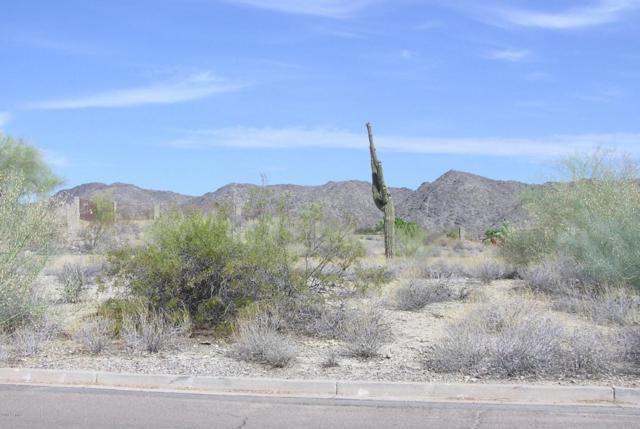 3722 E Cherokee Court, Phoenix, AZ 85044 (MLS #5782614) :: Realty Executives