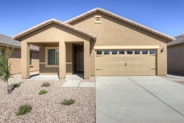 22641 W Gardenia Drive, Buckeye, AZ 85326 (MLS #5782619) :: Lifestyle Partners Team