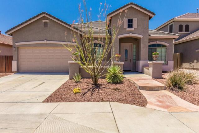 42032 N 44TH Drive, Phoenix, AZ 85086 (MLS #5782626) :: Realty Executives