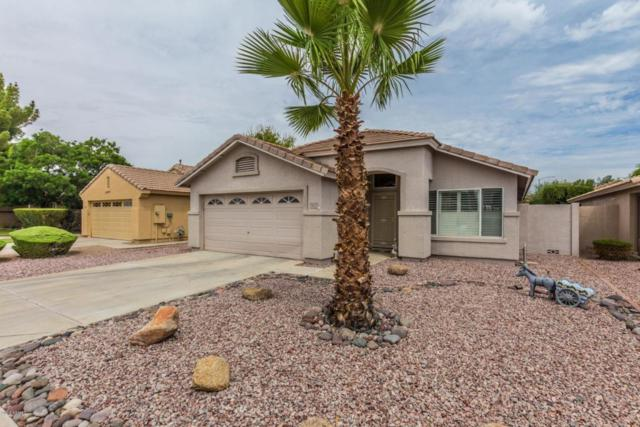 8028 W Melinda Lane, Peoria, AZ 85382 (MLS #5782634) :: The Worth Group