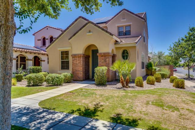 15311 W Dreyfus Street, Surprise, AZ 85379 (MLS #5782645) :: Realty Executives