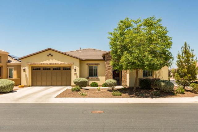 668 E Laddoos Avenue, San Tan Valley, AZ 85140 (MLS #5782646) :: Realty Executives