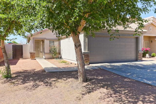 10669 W Willow Lane, Avondale, AZ 85392 (MLS #5782652) :: Realty Executives