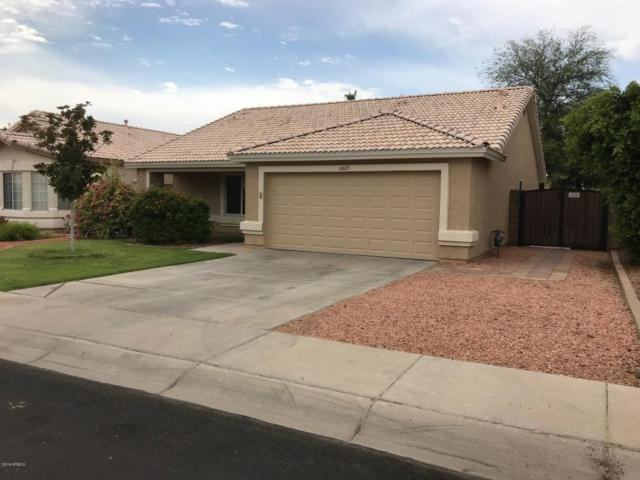 14625 W Marcus Drive, Surprise, AZ 85374 (MLS #5782658) :: Realty Executives