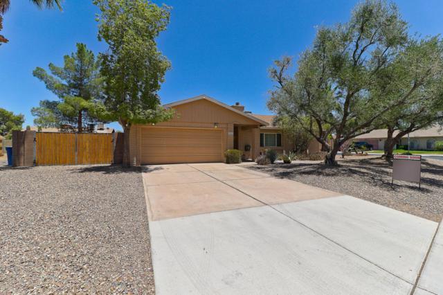 1803 N Bullmoose Drive, Chandler, AZ 85224 (MLS #5782709) :: Revelation Real Estate