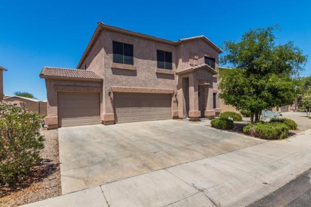 244 E Mule Train Trail, San Tan Valley, AZ 85143 (MLS #5782719) :: Revelation Real Estate