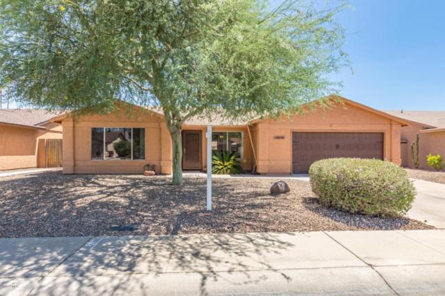 10715 E Clinton Street, Scottsdale, AZ 85259 (MLS #5782769) :: Revelation Real Estate