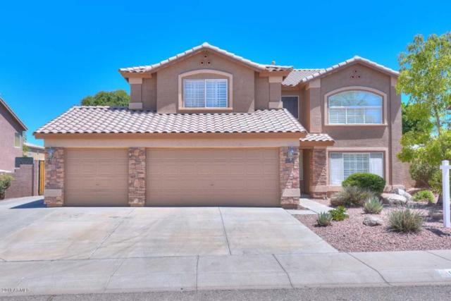 6422 W Range Mule Drive, Phoenix, AZ 85083 (MLS #5782801) :: REMAX Professionals