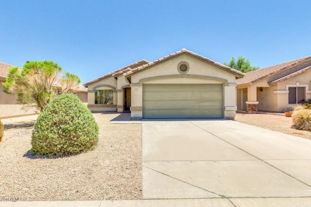 895 E Mohave Lane, Apache Junction, AZ 85119 (MLS #5782814) :: My Home Group
