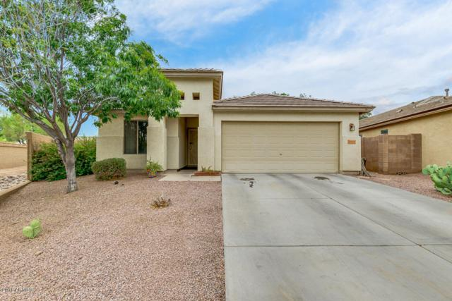 34668 N Barzona Trail, San Tan Valley, AZ 85143 (MLS #5782815) :: Revelation Real Estate