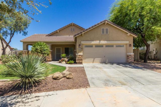 2331 S 173RD Drive, Goodyear, AZ 85338 (MLS #5782845) :: The Daniel Montez Real Estate Group