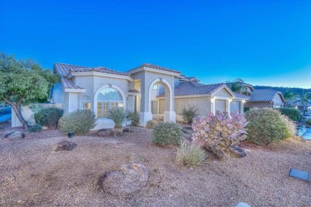 5717 W Soft Wind Drive, Glendale, AZ 85310 (MLS #5782853) :: The Worth Group
