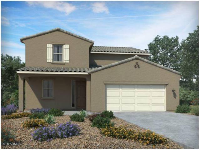 505 W Chapawee Trail, San Tan Valley, AZ 85140 (MLS #5782867) :: Revelation Real Estate