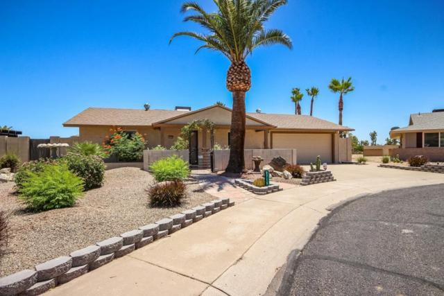 9715 N 105TH Avenue, Sun City, AZ 85351 (MLS #5782872) :: The Daniel Montez Real Estate Group
