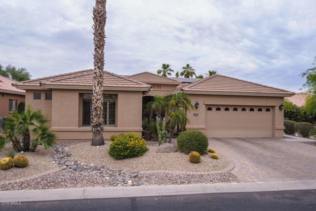 16036 W Monterey Way, Goodyear, AZ 85395 (MLS #5782967) :: The Daniel Montez Real Estate Group